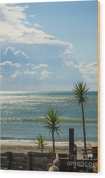 The Three Palms Wood Print