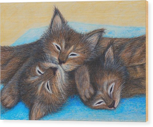 The Three Zzz Wood Print