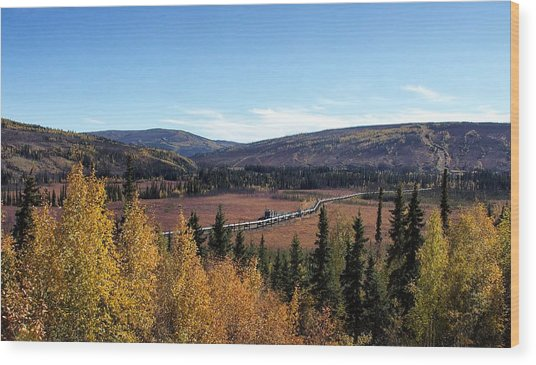 The Trans Alaska Pipline Wood Print