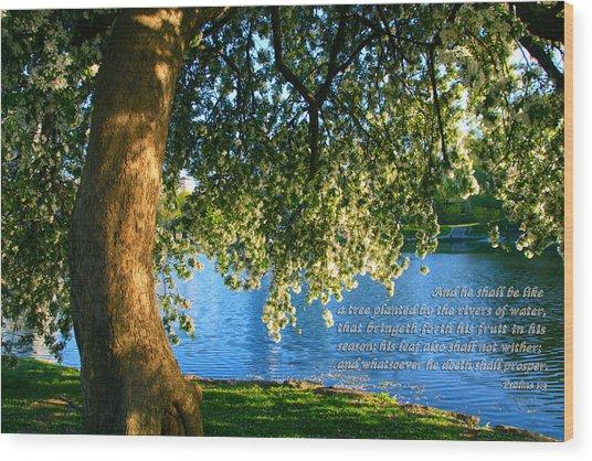 The Tree God Spoke Of... Wood Print