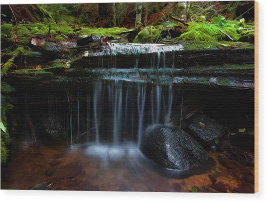 The Trickling Brook Wood Print