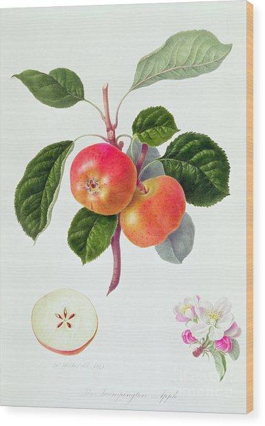 The Trumpington Apple Wood Print
