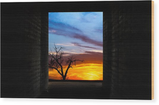 The Tunnel   Sunset1 Wood Print