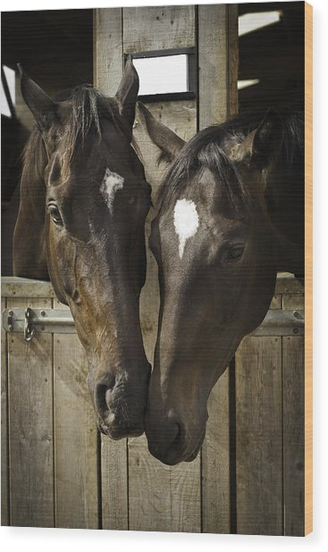The Two Of Us Wood Print by Lesley Rigg