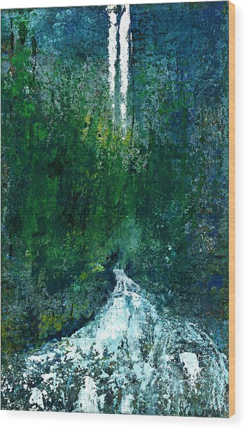 The Undiscovered Waterfall Wood Print by David Seacord