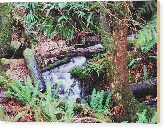 The Unknown Creek Wood Print