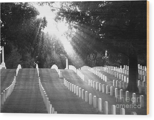The Unknown Soldiers Wood Print