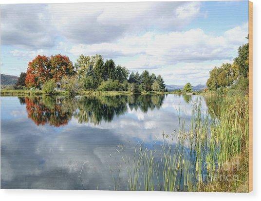 The View Across The Lake Wood Print