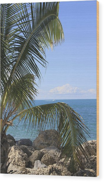 Key West Ocean View Wood Print