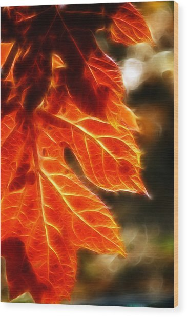 The Warmth Of Fall Wood Print