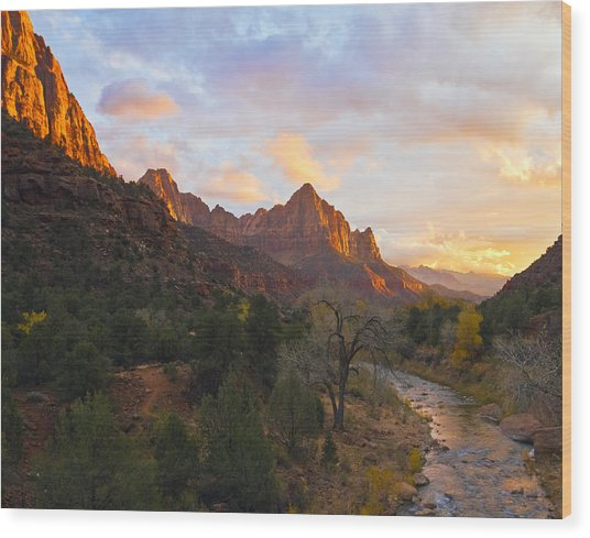 Wood Print featuring the photograph The Watchman by Gigi Ebert