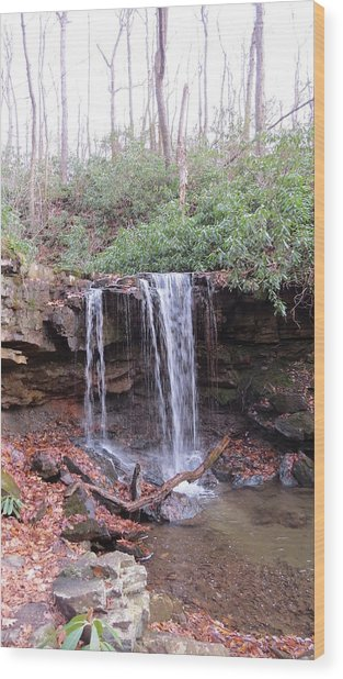 The Waterfall Wood Print by Diane Mitchell
