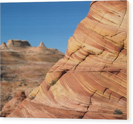 'the Wave' North Coyote Buttes 13 Wood Print