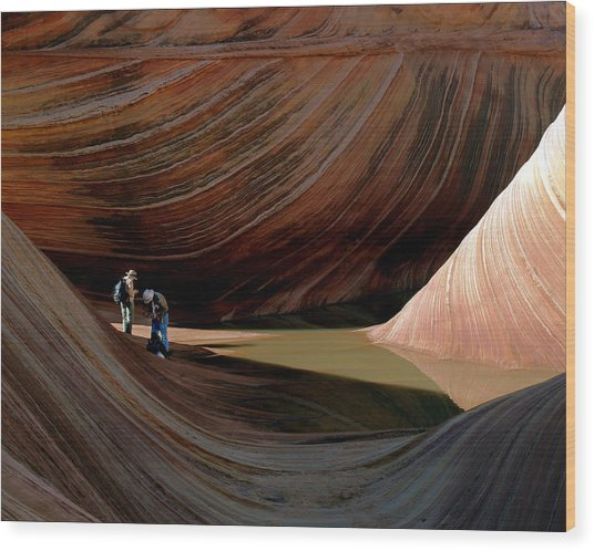'the Wave' North Coyote Buttes 44 Wood Print