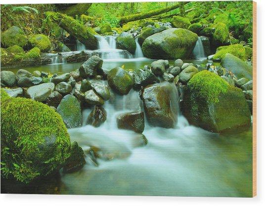 The Way Of Healing Water  Wood Print
