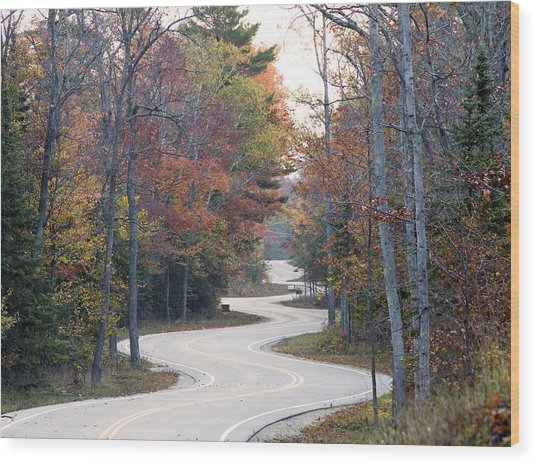 The Winding Road Wood Print by Jim Baker