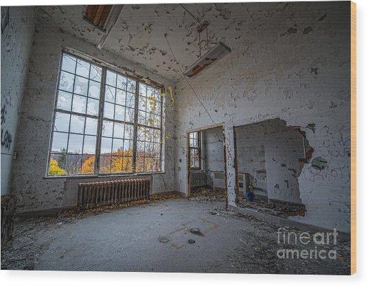 The Window View Wood Print