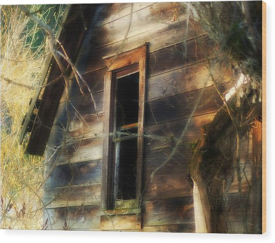 The Window2 Wood Print