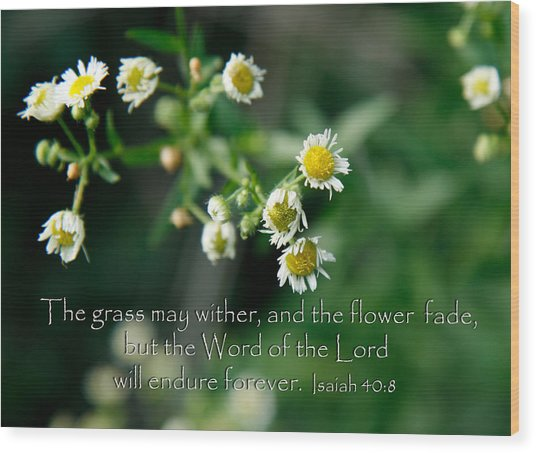 The Word Of The Lord Will Endure Wood Print