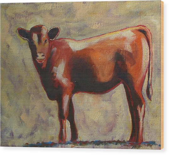 The Yearling Calf Wood Print