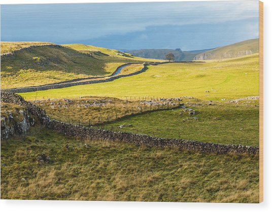 The Yorkshire Dales Wood Print