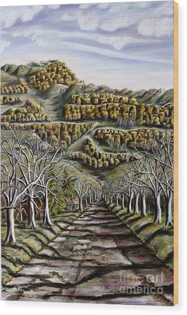 Then And Now A New Beginning 2 Wood Print by Linda  Steine