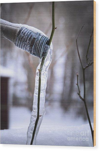 Thirst Wood Print