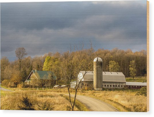 Thompson Point Dairy Wood Print