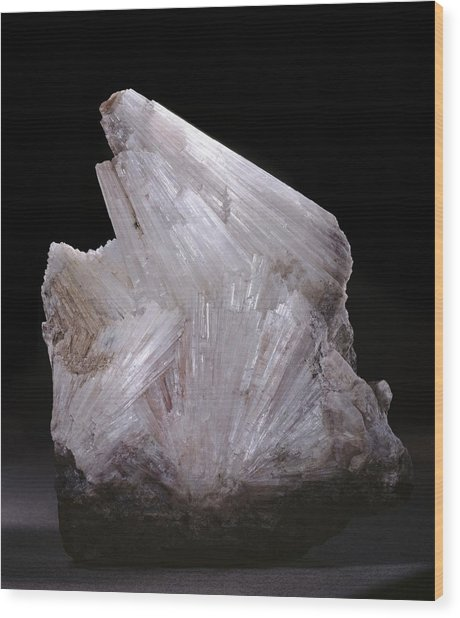 Thomsonite Mineral Specimen Wood Print by Science Photo Library