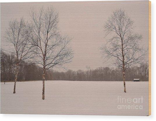 Three Birch Trees In Winter Wood Print