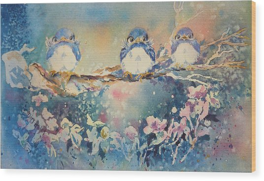 Three Blue Birds Wood Print