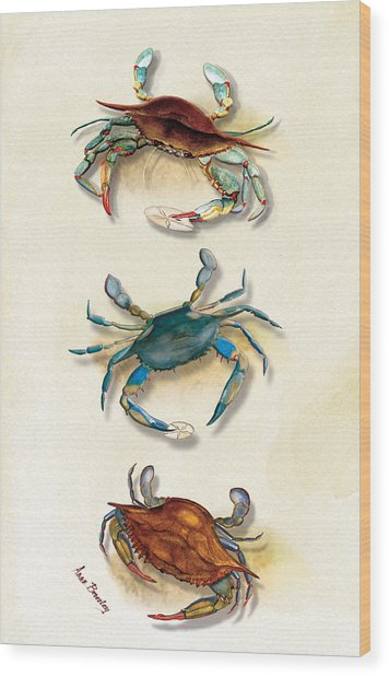Three Blue Crabs Wood Print