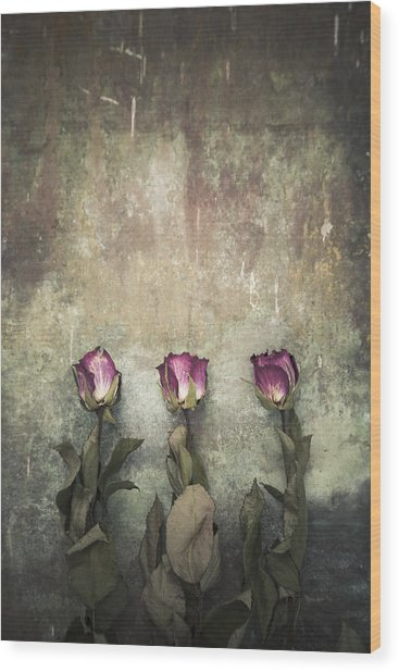 Three Dried Roses Wood Print