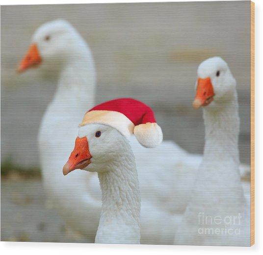 Three Geese At Christmas Wood Print