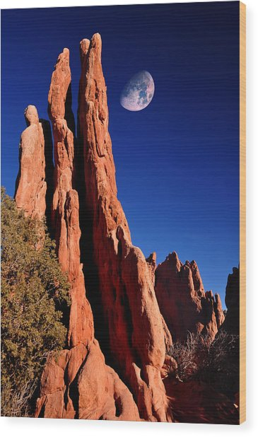 Three Graces At Garden Of The Gods Wood Print