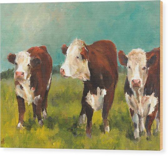 Three Herefords Wood Print by Cari Humphry