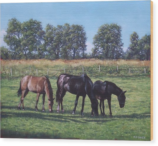 Three Horses In Field Wood Print
