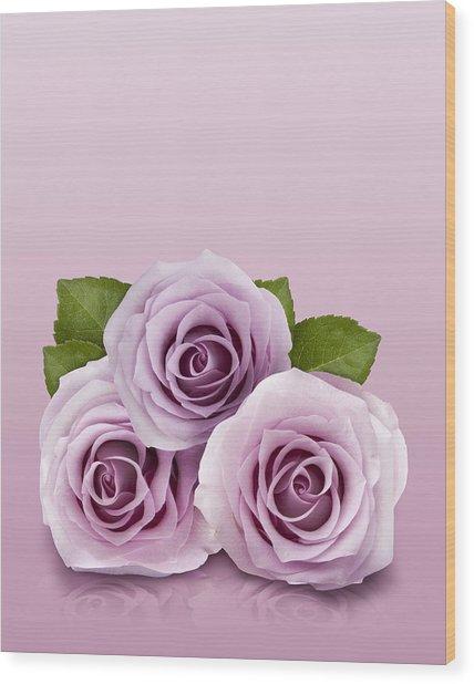 Three Lilac Roses Wood Print