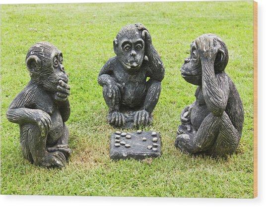 Three Monkeys Playing Checkers Wood Print