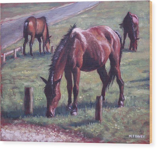 Three New Forest Horses On Grass Wood Print