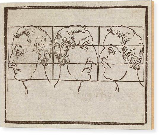 Three Nose Types Wood Print