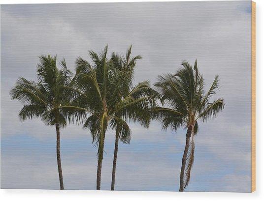 Three Palm Trees Wood Print