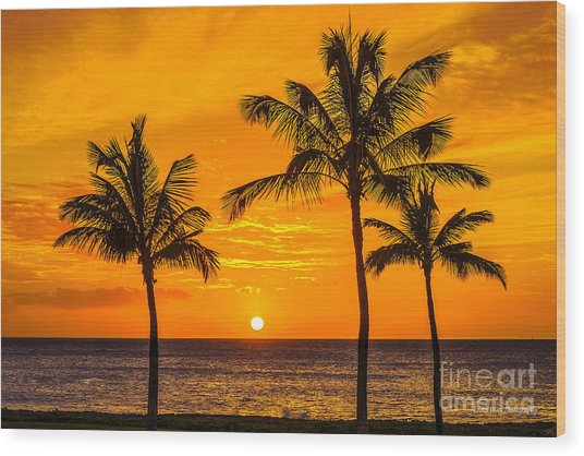 Three Palms Golden Sunset In Hawaii Wood Print
