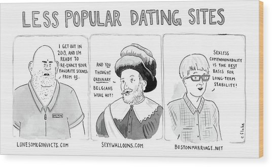 Three Panel Cartoon Of Online Dating Profiles Wood Print