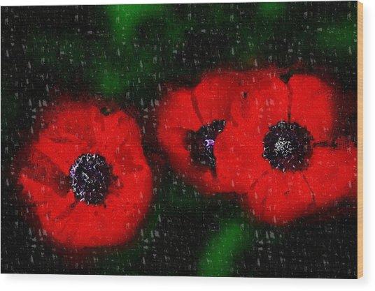 Three Poppies Wood Print