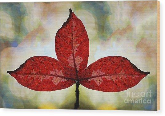 Three Red Leafs Wood Print