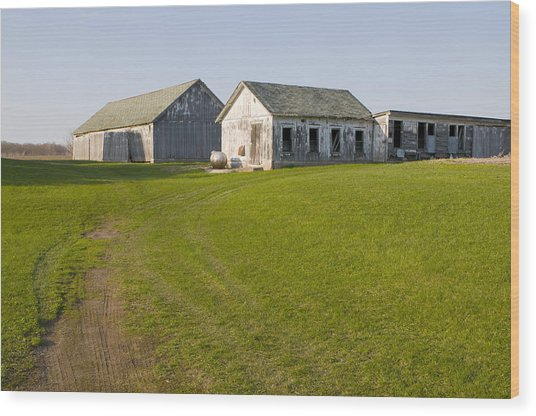 Three Weathered Farm Buildings Wood Print