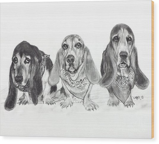 Three's Company Wood Print