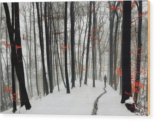 Through Autumn And Winter Wood Print