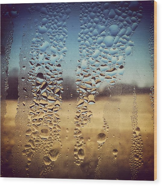Through Glass 1 Wood Print by Natalie Lizza
